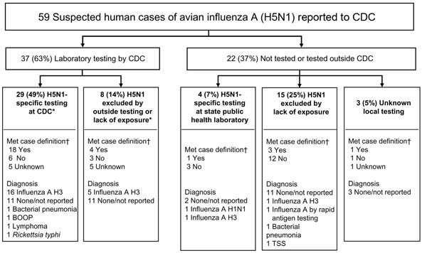 Influenza testing of suspected US cases of avian influenza A H5N1 reported to the Centers for Disease Control and Prevention (CDC) from February 2003 through May 2006. *Of the 37 samples tested by CDC, 35 were respiratory samples, 1 was serum, and 1 was a lung specimen. All 35 respiratory samples received by CDC were tested for human influenza by reverse transcription–PCR, and the serum sample was tested by microneutralization assay. †CDC suspected H5N1 case definition, February 2, 2004–June 7,