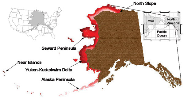 Composite geographic information system map illustrating the overlap of New World and Old World migration systems among 64 species of waterfowl (family Anatidae) and shorebirds (families Charadriidae and Scolopacidae) in northern and western Alaska (darkness of shade indicates species richness). This overlap between Asiatic and American birds in these families occurs in a zone whose extent is equivalent to a geographic band running from Lake Superior to North Dakota then to Texas and California in the lower 48 US states (left inset).