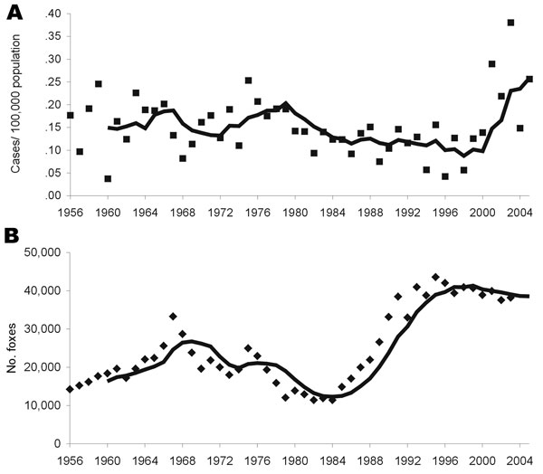 Actual data points with moving 5-year average for annual incidence of human alveolar echinococcosis in Switzerland (A) and annual number of foxes hunted per year in Switzerland (B), used as a fox population density marker.