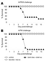 Thumbnail of Results of vaccination and booster with DNA prime–adenovirus (Ad), showing cross-protection. Mice (8–10 per group) were immunized as in Figure 4 or intranasally given a sublethal priming infection with A/PR/8. Three weeks later they were challenged with a high dose of A/PR/8 (1.5x 104 50% lethal dose [LD50]) or moderate dose of A/FM (10 LD50) and monitored for survival. The cumulative survival rate for mice immunized with A/PR/8 and M2-DNA+M2-Ad was significantly higher than that fo