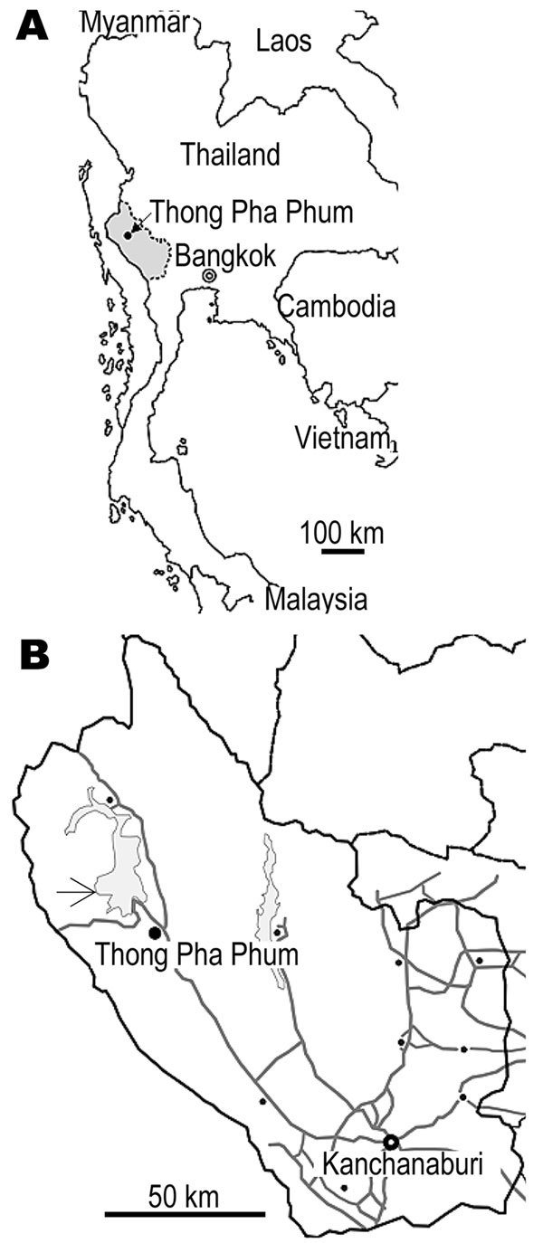 A) Map of Thailand showing Kanchanaburi Province (shaded area). B) The study area in Thong Pha Phum District (arrow).