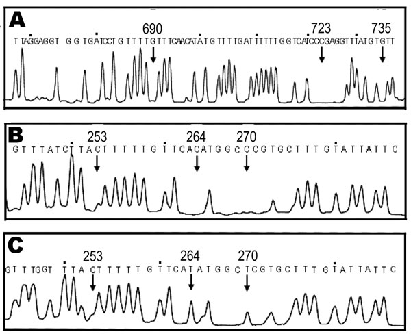 Molecular identification of formalin-fixed and acetocarmine-stained samples by base excision sequence scanning thymine-base (BESS) T-base analysis. BESS T-base profiles are shown in panels A, B, and C. A) Thymine-base profile using the 112-bp cox1 products from patient samples 3–6. B) and C) BESS T-base analysis data that used 136-bp cob products from scolices with and without hooklets, respectively. Arrows indicate diagnostic positions. Nucleotide sequences indicated above the peaks are from GenBank databases (AB066485 for cox1, AB066570 and AB066580 for cob).