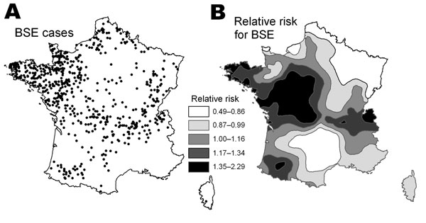 Location of the 629 bovine spongiform encephalopathy (BSE) cases under study (A) and disease mapping of the relative risk for BSE compared with the average national risk (B). For improved legibility, map B was smoothed using a spatial interpolation of the relative risk for BSE in the delivery areas.