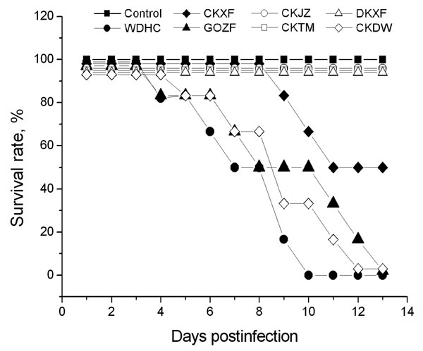 Survival times of mice infected with the 7 avian influenza virus (H5N1) isolates. Mice were intranasally inoculated with 106 50% egg infectious dose of viruses in a volume of 50 μL. A/widgeon/Hubei/EWHC/2004 (EWHC), A/chicken/Hubei/327/2004 (CKDW), and A/goose/Hubei/ZFE/2004 (GOZF) induced a 100% death rate within 4–13 days, A/chicken/Hubei/XFJ/2004 (CKXF) induced a 50% death rate, and A/duck/Hubei/XFY/2004 (DKXF), A/chicken/Hubei/TMJ/2004 (CKTM), and A/chicken/Hubei/JZJ/2004 (CKJZ) caused no clinical signs or death.