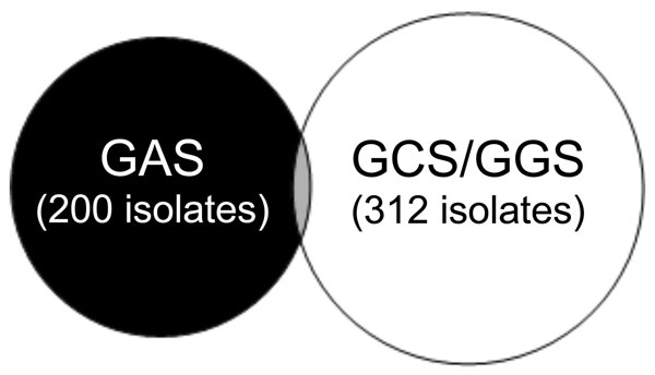 Venn diagram of positive throat swabs, Northern Territory, Australia, showing that group A streptococci (GAS) and Streptococcus dysgalactiae subsp. equisimilis (GCS/GGS) appear almost mutually exclusive. Thirteen persons had GAS and GCS or GGS, and 1 child had GAS, GCS, and GGS.