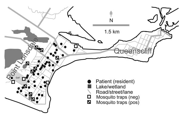 Map of Point Lonsdale/Queenscliff, Australia (postcode 3225), showing location of houses of affected permanent residents, mosquito traps, and other features mentioned in the text. Not all traps yielded PCR-positive mosquitoes during the trapping period. Neg, negative; pos, positive.