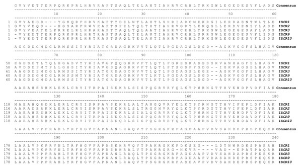 Amino acid sequence alignment of the central regions from the novel insertion element common region (ISCR) elements, ISCR9 and ISCR10. These sequences are aligned with ISCR2 and ISCR3, also found within this study, and ISCR. A consensus sequence is provided in the line above each alignment and numbering reading left to right.