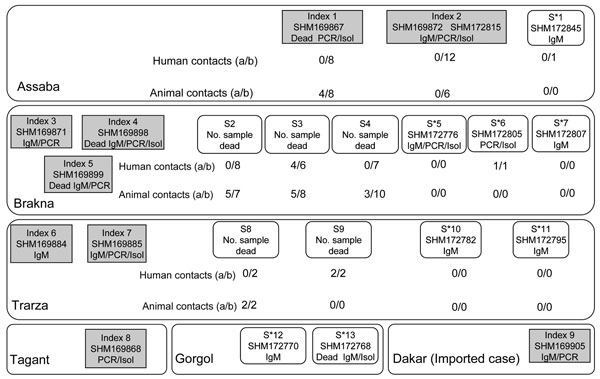Investigation of human and animal contact around index and suspected case-patients (S) from Mauritania in 2003. For each case-patient (represented as a box), PCR, immunoglobulin M (IgM), or isolation (Isol)-positive test results are indicated below the sample number (e.g., 169867).(a/b), no. IgM positive/no. tested; S*, suspected case-patient before field investigation and subsequently confirmed positive by laboratory tests.