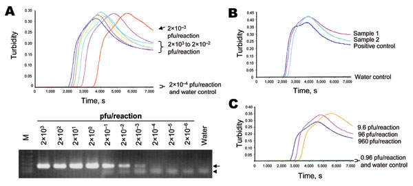 Detection of influenza (H5) virus by loop-mediated isothermal amplification (LAMP). A) Serially diluted RNA from A/Vietnam/1203/2004 was tested by the reverse transcription (RT)–LAMP (upper panel) and RT-PCR (lower panel) assays. The viral titers used in these reactions are indicated. Viral RNA was extracted by using the QIAamp Viral RNA Mini Kit (QIAGEN, Valencia, CA, USA) according to the manufacturer's instructions. For a typical 25-μL reaction, 2 μL of sample was mixed with 2× in-house reaction buffer (40 mmol/L Tris-HCl, pH 8.8; 20 mmol/L KCl; 16 mmol/L MgSO4; 20 mmol/L [NH4]2SO4; 0.2% Tween 20 [v/v]; 1.6 mol/L betaine; 2.8 mmol/L each dNTP), 50 U Bst DNA polymerase (New England Biolabs, Ipswitch, MA, USA), 8 U avian myeloblastosis virus reverse transcriptase (Invitrogen, Gaithersburg, MD, USA), 40 pmol/L primers FIP and BIP, 20 pmol/L primers LPF and LPR, and 5 pmol/L primers F3 and B3. Reaction mixtures were incubated at 60ºC for 120 min, and the turbidity of these reactions was examined by use of a turbidity meter (LA-200, Treamecs; Kyoto, Japan) in real time. The turbidities of these reactions 5–20 min after incubation were taken as the baseline. The threshold value for a positive reaction was set to be 10× above the standard deviation of the baseline. For the H5-specific RT-PCR assay, primers H5-1 (5′-GCCATTCCACAACATACACCC-3′) and H5-3 (5′-CTCCCCTGCTCATTGCTATG-3′) were used according to the protocol optimized by the World Health Organization H5 Reference Laboratory Network (7). Positive (219 bp) and nonspecific products from the PCR reaction are highlighted by the arrow and arrowhead, respectively. B) Detection of H5 virus in postmortem lung tissues from a patient with influenza (H5). Signals from the tested samples, positive control, and water control are indicated. C) Direct detection of influenza (H5) viruses from culture supernatants. Heat-treated supernatant from cells infected with A/Vietnam/1203/2004 were serially diluted and directly used as input in the LAMP assay. The plaque-forming units (pfu) of influenza (H5) virus in these reactions are shown.
