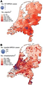Thumbnail of A) Number of nontypable methicillin-resistant Staphylococcus aureus (NT-MRSA) isolates per municipality received at the National Institute for Public Health and the Environment (RIVM), Bilthoven, the Netherlands, January 2003–June 2005. The background color represents the density of pigs per km2 in 2003. B) Number of typable MRSA per municipality received at the RIVM January 2003–June 2005. The background color represents the population density per km2 (source: CBS Statline).