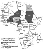 Thumbnail of Map of Africa, documenting spread of influenza (H5N1).
