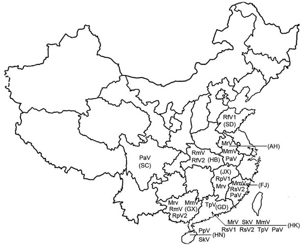 Distribution of coronaviruses isolated in the People's Republic of China. RsV, detected in Rhinolophus sinicus; PaV, detected in Pipistrellus abramus; TpV, detected in Tylonycteris pachypus; RfV, detected in R. ferrumequinum; RmV, detected in R. macrotis; PpV, detected in P. pipistrellus; SkV, detected in Scotophilus kuhlii; MrV, detected in Myotis ricketti; RpV, detected in R. pearsoni; MmV, detected in Miniopterus magnater; MpV, detected in M. pusillus. Abbreviations for provinces are shown in parentheses. SC, Sichuan Province; AH, Anhui Province; FJ, Fujian Province; HN, Hainan Province; GD, Guangdong Province; HB, Hubei Province; GX, Guangxi Province; SD, Shandong Province; JX, Jiangxi Province; HK, Hong Kong Special Administrative Region, People's Republic of China.
