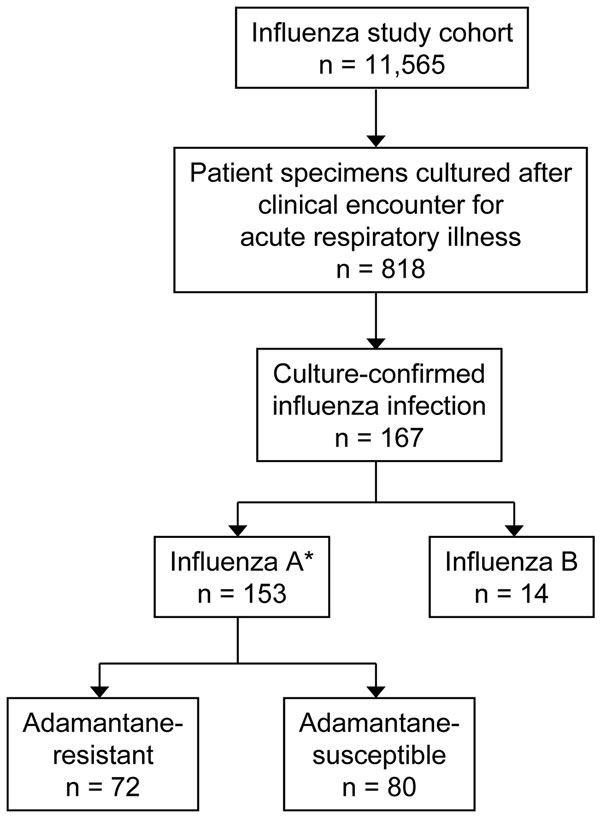 Results of patient recruitment and influenza cultures. *One isolate was not characterized.
