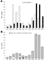 Thumbnail of Monthly distribution of 387 cases of hand, foot, and mouth disease (HFMD) associated with isolation of either coxsackievirus A16 (CVA16) (214 cases) or human enterovirus 71 (HEV71) (173 cases), southern Vietnam, 2005. RNA was extracted from cells inoculated with vesicle, throat swab, or stool specimens. Partial VP4 gene sequences were amplified by reverse transcription–PCR (RT-PCR) by using specific primers (22), the amplified cDNA sequenced, and the serotype and/or genogroup specificity determined by BLAST analysis. A) Monthly distribution of CVA16 and HEV71-associated HFMD cases. B) Monthly distribution of 173 HFMD cases associated with HEV71 infection with strains belonging to subgenogroups C1, C4, or C5.