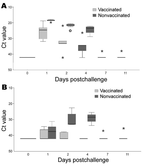 Detection of viral RNA by real-time reverse transcription–PCR (RT-PCR) from oropharyngeal (A) and cloacal (B) swabs of 5 vaccinated and 5 nonvaccinated falcons after challenge with 106.0 50% egg infectious doses of the highly pathogenic avian influenza virus strain A/Cygnus cygnus/Germany/R65/06 (H5N1). Y axis shows cycle-of-threshold (Ct) values of real-time RT-PCRs detecting an M gene fragment in individual swab samples of each animal. Asterisks represent extreme values; open circles show individual outliers; black bars within boxes indicate medians.