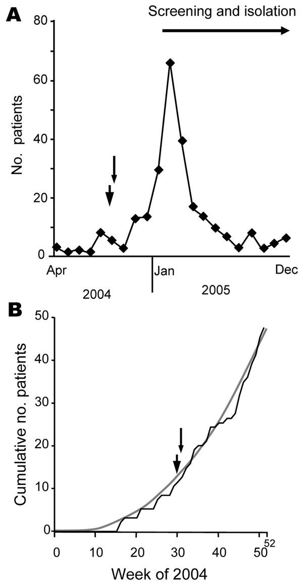 Course of vancomycin-resistant enterococci (VRE) outbreak at a German university hospital and time point (arrowhead, 30th calendar week; arrow, 31st calendar week) when outbreak alert could have been given. A) Number of VRE-carrying patients treated in a university hospital in 2004 and 2005. Given is the number of patients who were identified for the first time within a certain month (incident cases). In 2004 the first VRE patient was discovered in April 2005. B) Sum of VRE-exhibiting patients (cumulative number of patients [incident cases]) within distinct calendar weeks in 2004 (black line). Trend line (gray line) indicates exponential increase of numbers of incident cases (y = 0.002, χ2 – 0.3497 × 1.0299 [R2 = 0.9918]).