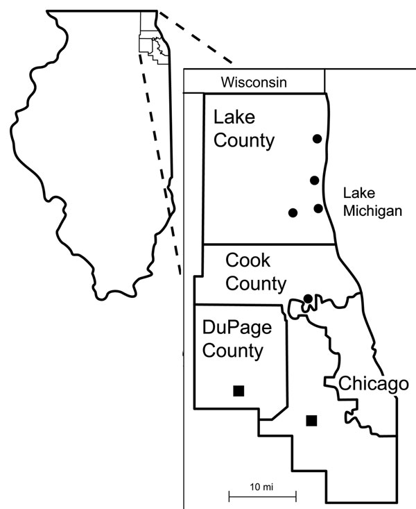 Sites surrounding Chicago from which Borrelia burgdorferi–infected Ixodes scapularis ticks were recovered in 2005–2006 (■) and 2006–2007 (●).