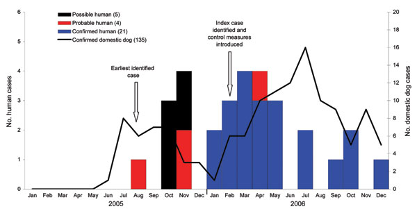 Numbers of possible, probable, and confirmed human cases and laboratory-confirmed domestic dog rabies cases by month of diagnosis, Limpopo Province, South Africa, 2005–2006.