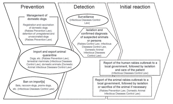 Regulatory framework for preventing and controlling rabies in Japan. Under 3 laws, countermeasures against rabies are divided into prevention, detection, and initial reaction. Infectious Diseases Control Law means Law Concerning the Prevention of Infectious Diseases and Medical Care for Patients with Infectious Disease. Solid and dashed lines show ordinary and emergency countermeasures, respectively.