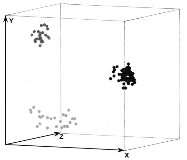 Three-dimensional presentation of the principal coordinate analysis of the PCR fingerprinting data showing 3 distinct clusters which correspond to Scedosporium prolificans (black dots), S. aurantiacum (dark gray dots), and S. apiospermum (light gray dots), with S. apiospermum showing the highest genetic variation.