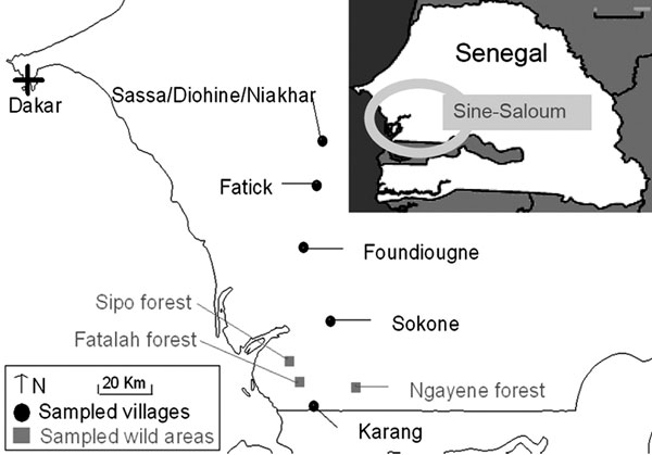 Sampling sites in the Fatick region of Sine-Saloum, Senegal.