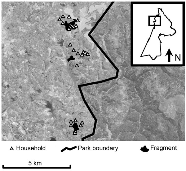 Map of study area within Kibale National Park, western Uganda (box) and forest fragments and households included in the study. Fragments are (from north to south) Kiko 1, Bugembe, Rurama (see Table 1 for details). Households, park boundary, and fragments are superimposed on a Landsat satellite image (30-m resolution).