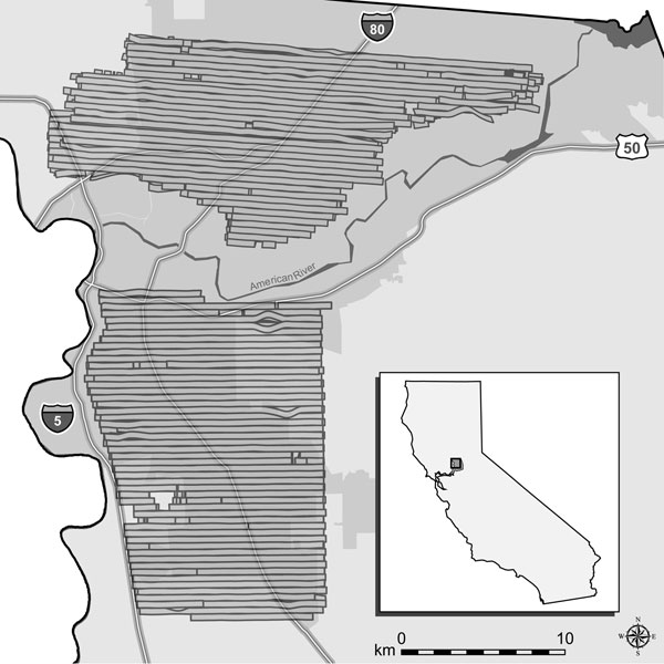 Map of northern and southern aerial adulticiding treatment areas in Sacramento County, California, 2005, showing the 2 urban areas treated by the Sacramento-Yolo Mosquito and Vector Control District (SYMVCD). Horizontal bars represent swaths of spray clouds created by individual passes of the aircraft, as defined by the spray drift modeling systems. Gaps within spray clouds were caused by factors such as towers and buildings that altered the flight of the aircraft (G. Goodman, SYMVCD, pers. comm.). These gaps were assumed to have negligible effect in this study; no human cases occurred within any gaps. Gray region surrounding much of the spray zones represents the urbanized area of Sacramento; urbanized area is defined by the US Census Bureau as a densely settled territory that contains >50,000 persons (21). For display purposes, we used the NAD83 HARN California II State Plane coordinate system (Lambert Conformal Conic projection). Inset shows location of treatment areas in California.