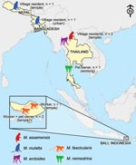 Thumbnail of Figure 3 - Map of the diverse contexts, countries, and nonhuman primate (Macaca) species associated with human infection with simian foamy virus.