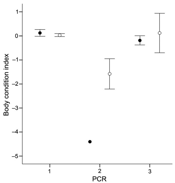 Figure 1 - Relationship between body condition index (mean ± standard error) and diagnosis of European bat lyssavirus type 1 by reverse transcription PCR. Males and females are represented as filled and open circles, respectively. 1, only negative in oropharyngeal swab and brain specimens (● n = 49; ○ n = 225); 2, positive in oropharyngeal swab and brain specimens (● n = 1; ○ n = 4); 3, positive in oropharyngeal swab but negative in brain specimen (● n = 3; ○ n = 4).