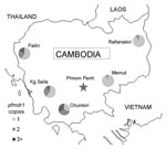 Thumbnail of Map of Cambodia with locations of surveillance sites and proportion of isolates containing 1, 2, or >3 copies of pfmdr1, May 2004–December 2006.