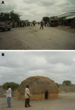 Thumbnail of Figure 1 - Photographs depicting differences between sublocations in northeastern Kenya. Sogan-Godud (A) has more permanent dwellings and stores with tin-roofed buildings. Gumarey (B) has more semipermanent traditional dwellings and animal grazing areas.