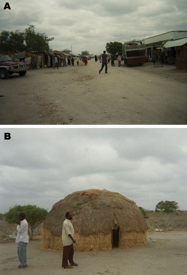 Figure 1 - Photographs depicting differences between sublocations in northeastern Kenya. Sogan-Godud (A) has more permanent dwellings and stores with tin-roofed buildings. Gumarey (B) has more semipermanent traditional dwellings and animal grazing areas.