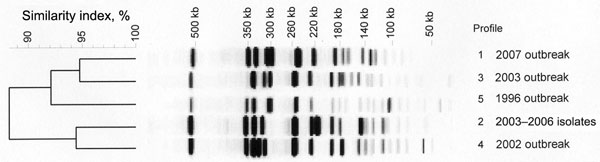 Pulsed-field gel electrophoresis–generated dendrogram for 43 Shigella sonnei isolates obtained from sporadic or outbreak cases during 1996–2007 in the Paris area. Profile 1) representative isolates from the 2007 outbreak, including 32 isolates with azithromycin MIC >256 mg/L by Etest and 2 isolates with azithromycin MIC <16 mg/L. Profile 2) 6 representative isolates from sporadic cases (2003–2006) with azithromycin MIC <16 mg/L. Profile 3) representative isolate Shi 03-3580 from 2003 outbreak with azithromycin MIC <16 mg/L by Etest. Profile 4) representative isolate Shi 02-9633 from 2002 outbreak with azithromycin MIC <16 mg/L by Etest. Profile 5) representative isolate Shi 96 1420 from 1996 outbreak with azithromycin MIC <16 mg/L by Etest.