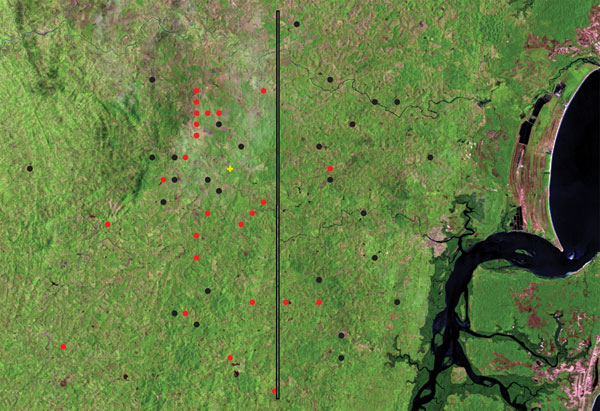 Satellite view of distribution of patients with disseminated leishmaniasis (DL; black circles) and patients with mucosal leishmaniasis (ML; red circles) in Corte de Pedra, Brazil, 1999–2003. Vertical line divides the region into inner (left) and coastal (right) areas of similar size. Total number of patients shown is smaller than the number of corresponding patients because of overlap of geographic coordinates for some patients. For details, see Materials and Methods. p = 0.00005, for data analy