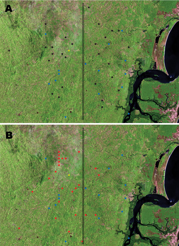 Satellite view of distribution of patients with disseminated leishmaniasis (DL) limited to the skin, patients with mucosal leishmaniasis (ML), and patients with DL showing mucosal involvement (MDL) in Corte de Pedra, Brazil, 1999–2003. A) Black circles indicate patients with DL, and blue circles indicate patients with MDL. B) Red circles indicate patients with ML, and blue circles indicate patients with MDL. Vertical line divides the region into inner (left) and coastal (right) areas of similar