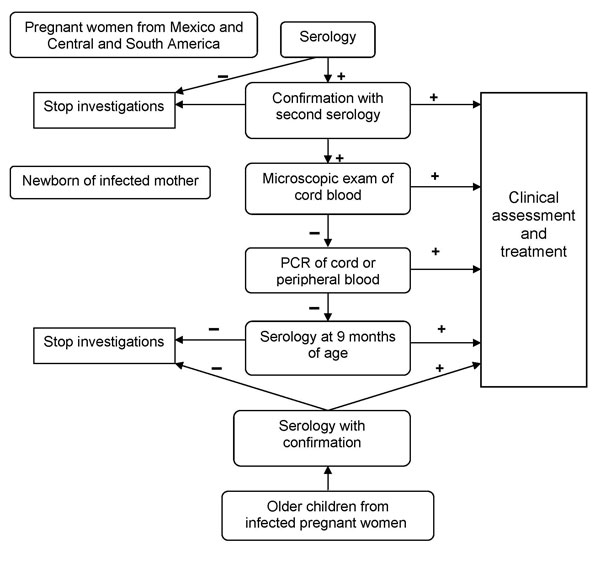 Algorithm for screening, diagnosis, and treatment of Trypanosoma cruzi congenital infection at Geneva University Hospitals, Geneva, Switzerland.