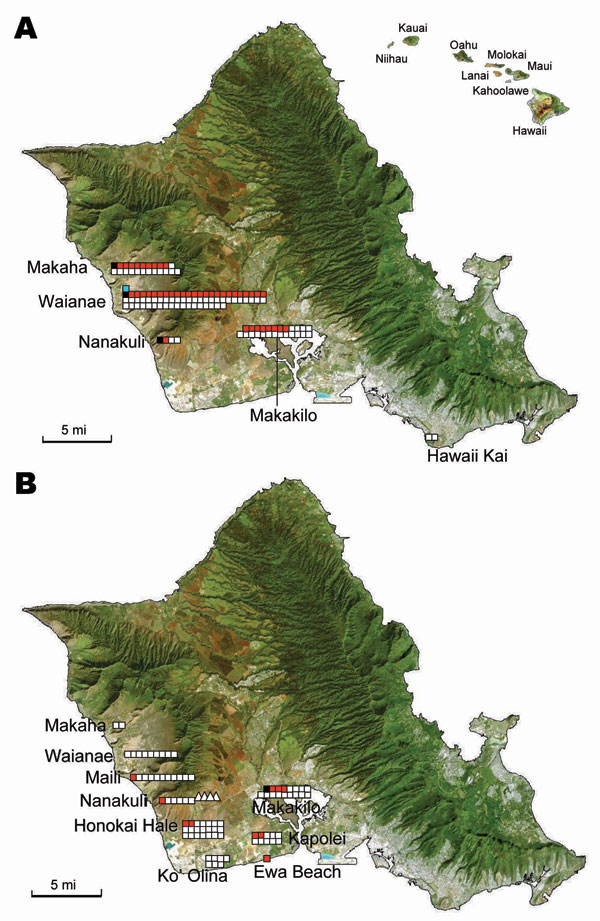 Detection of Rickettsia typhi and R. felis DNA in Xenopsylla cheopis trapped in Oahu, Hawaii, in A) 2004 and B) 2006 and 2007. Hawaii is shown in the inset. Symbols correspond to sites of sample collection. White squares, collections in 2004 and 2006 of fleas negative for R. felis and R. typhi; white triangles, collections in 2007 of fleas negative for R. felis and R. typhi; red squares, fleas positive for R. felis; black squares, fleas positive for R. typhi; blue squares, fleas positive for both R. typhi and R. felis. Maps were obtained from www.hear.org/starr/maps/stock/landsat.htm
