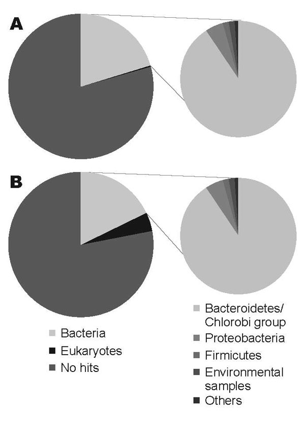Comparison of the organisms from which the best matches for the sequences were derived from a BLASTN (http://blast.ncbi.nlm.nih.gov) search with an expect-value cutoff of 10–5. A) DNA from nondiarrheic fecal sample collected 3 months after patient had recovered. B) DNA from diarrheic fecal sample collected while patient was ill.