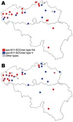 Thumbnail of Distribution, by farms, of epidemic methicillin-resistant Staphylococcus aureus strains of spa type t011-SCCmec type IV, t011-SCCmec type V, and other types, Belgium, 2007. A) Farm residents and workers; B) Pigs. SCC, staphylococcal cassette chromosome.