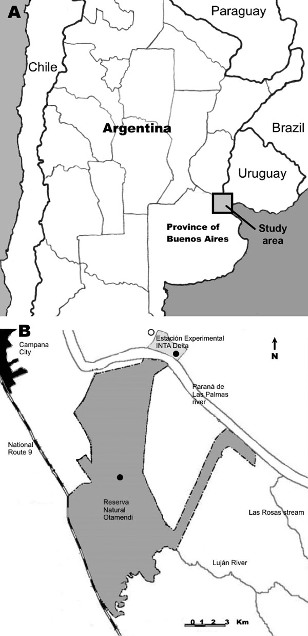 A) Location of study area in the lower Paraná River Delta of Argentina. B) Tick collection sites along the Paraná River (dark circles) and a recently reported case of eschar-associated rickettsiosis (open circle) identified by clinicians in Buenos Aires Province, Argentina (7).