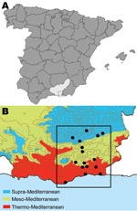 Thumbnail of A) Location of the Alpujarras in southeastern Spain (37º00'–37º20'N and 3º00'–3º30'W). B) Bioclimatic levels (shading) and villages (black dots) where serum samples were collected from dogs to examine for leishmaniasis prevalence and sandflies were collected to estimate densities, April–June 2006. Of 1,675 sandflies captured, 269 were identified by morphologic appearance as Phlebotomus perniciosus (density 0–165 specimens/m2) and 22 as P. ariasi (0 and 11 specimens/m2).