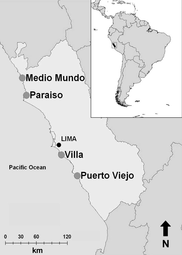 Locations of 4 sites (large circles) along coast of Peru where wild bird fecal samples were collected, June 2006–December 2007.