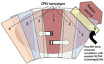 Thumbnail of Expanding-wedge tactic with progressive elimination (9). Numbers represent successive oral rabies vaccination (ORV) zones. Potential savings are assumed for the area of progressive elimination, southern Ontario Province. The rectangle bordering the rabies source (i.e., 5) highlights an area of enhanced surveillance, possible point infection control (PIC) activities, trap–vaccinate–release (TVR) activities, or an ORV zone intended to deter future reemergence of the virus.
