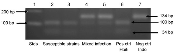 Agarose gel electrophoresis of amplicons for the Plasmodium falciparum chloroquine (CQ) resistance transporter gene digested with ApoI. Lane 1, DNA molecular mass standards (Stds) (Invitrogen, Carlsbad, CA, USA); lanes 2 and 3, amplicons susceptible to cleavage by ApoI, showing 2 fragments of 100 and 34 bp, consistent with infection by only CQ-susceptible haplotype parasites; lanes 4 and 5, amplicons partially resistant to cleavage by ApoI, showing 3 fragments of 134, 100, and 34 bp, consistent