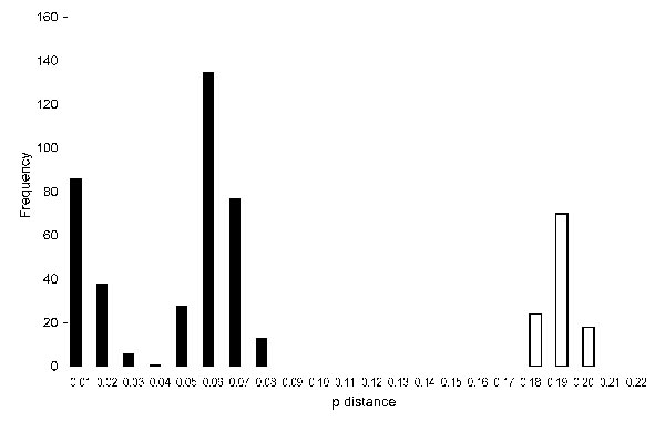Histogram showing distribution of nucleotide pairwise (p) distances in the medium segment of Toscana virus. p distances are for nucleotides; frequencies are for intervals of 0.01. Validity of this method was confirmed by analysis of variance, comparing the scores of sequence comparisons within genotypes to those between genotypes. Black bars indicate intralineage distribution; white bars indicate interlineage distribution.