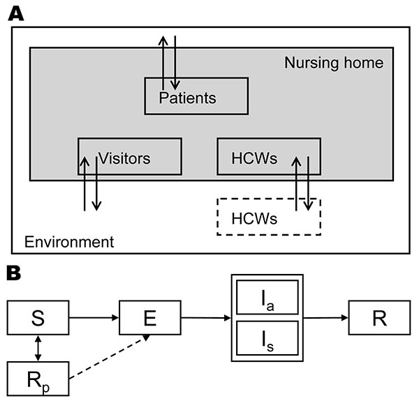 Schematic diagram of our stochastic individual-based model. A) The different types of persons in the nursing home: patients, healthcare workers (HCWs), and visitors. B) The time course of infection: S, susceptible; E, exposed; Ia, infectious and asymptomatic; Is, infectious and symptomatic; R, recovered/immune; Rp, immune while using prophylaxis. For all patients and HCWs in the model, we kept track of their stage in this infection cycle in time. If the influenza strain that is transmitted is re