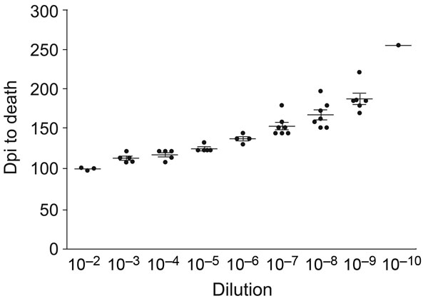 Example of titration curves for all homogenates titered. The curve shown is Djungarian second-passage brain homogenate with 3–7 hamsters per dilution. Error bars indicate SEM. Dpi, days postinoculation.
