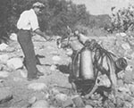 Thumbnail of Donkeys used to transport equipment and larvicide in hilly territory, Sardinia, 1948–1950. Photograph by Wolfgang Suschitzky. Reprinted with permission from Istituto Etnografico della Sardegna.