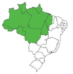 Thumbnail of Map of Brazil showing the Amazon region (green).