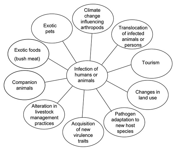 Factors influencing new and reemerging zoonoses.
